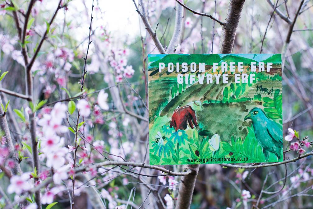 Poison Free Erf in Suurbraak